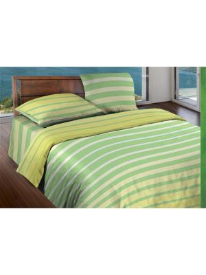Комплект постельного белья Евро бязь Stripe Lime Wenge. Цвет: светло-зеленый, белый, светло-желтый