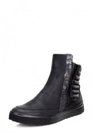 Ботинки CLEO ECCO. Цвет: черный