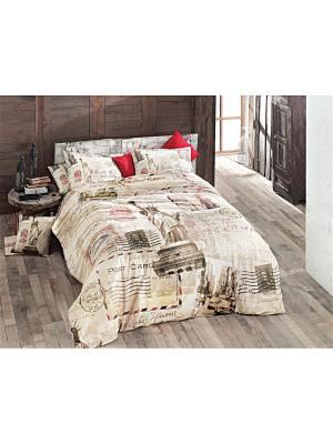 Комплект постельного белья NEW YORK ранфорс, 145ТС, евро ISSIMO Home. Цвет: светло-бежевый