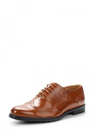 Туфли Tony-p. Цвет: коричневый