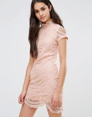 Girl In Mind Кружевное платье-футляр с короткими рукавами. Цвет: розовый