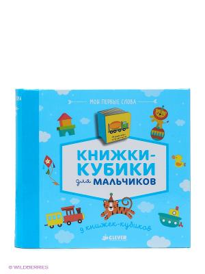 9 книжек-кубиков. Книжки-кубики для мальчиков. Мои первые слова Издательство CLEVER. Цвет: голубой