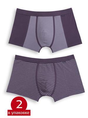 Трусы PELICAN. Цвет: фиолетовый, лиловый