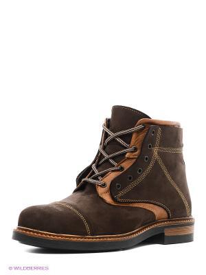 Ботинки Dino Ricci. Цвет: коричневый, рыжий