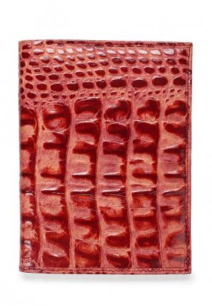 Обложка для документов Franchesco Mariscotti. Цвет: розовый
