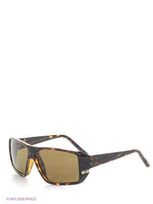Очки солнцезащитные B 112 C2 Borsalino. Цвет: коричневый