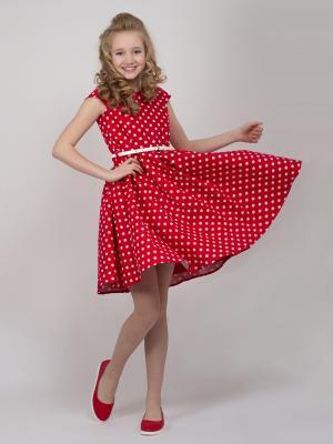 Платье Белла Shened