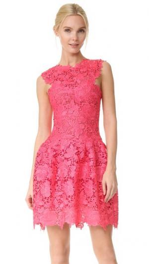 Структурированное платье Monique Lhuillier. Цвет: вишня