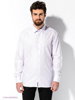 Рубашка ARROW. Цвет: сиреневый