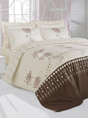 Постельное белье Кассия Тет-а-Тет. Цвет: темно-коричневый, молочный