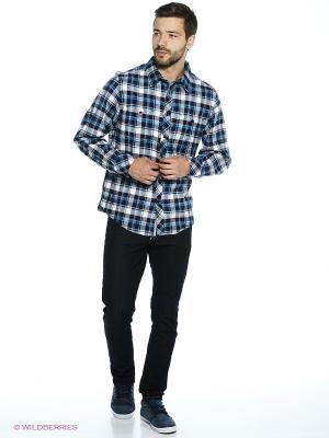 Рубашка Trespass. Цвет: синий