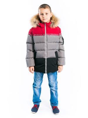 Куртка Арсений Аксарт. Цвет: бордовый, серый, черный