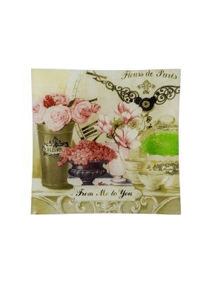 Пепельница Gift'n'Home. Цвет: зеленый, розовый