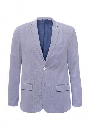 Пиджак Piazza Italia. Цвет: голубой