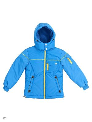 Куртки Senso kids. Цвет: голубой