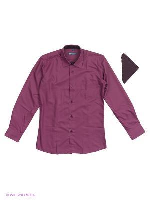 Сорочки Brostem. Цвет: лиловый