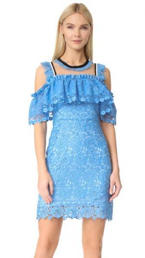 Платье с открытыми плечами Blue Bell Three Floor. Цвет: васильковый синий/телесный