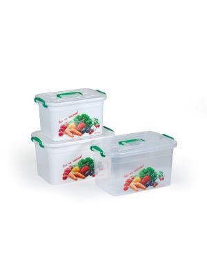 Набор контейнеров Все на пикник - для шашлыка Полимербыт. Цвет: белый