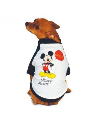 Футболка Mickey, размер S. TRIOL. Цвет: белый, черный