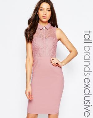 Paper Dolls Tall Кружевное платье-футляр с воротничком. Цвет: розовый