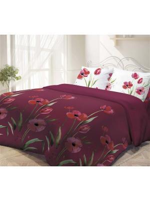 Комплект постельного белья 2,0-сп, ГАРМОНИЯ, поплин 50*70см, Маки Волшебная ночь. Цвет: бордовый, белый