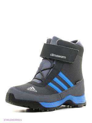 Ботинки CW ADISNOW CF CP K Adidas. Цвет: темно-серый, синий