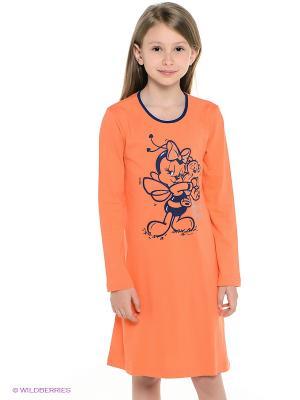 Платье Vienetta Secret. Цвет: оранжевый