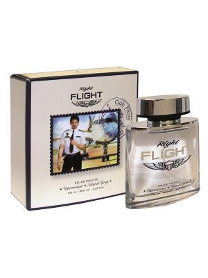 Туалетная вода Right Flight (Райт Флайт) муж 100 мл APPLE PARFUMS. Цвет: прозрачный