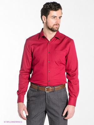 Рубашка TOM FARR. Цвет: малиновый