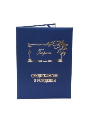 Именная обложка для свидетельства о рождении Георгий Dream Service. Цвет: синий