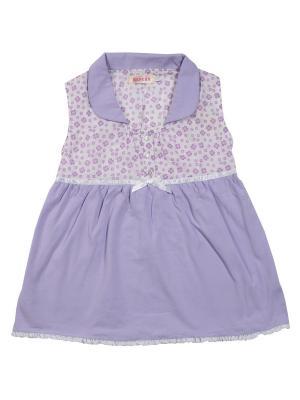 Блузка ВЕНЕЙЯ. Цвет: фиолетовый
