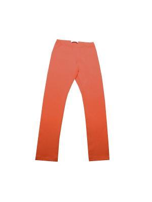 Легинсы Stillini. Цвет: оранжевый
