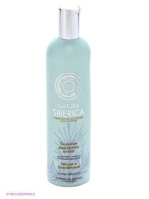 Бальзам для сухих волос Объем и увлажнение Natura Siberica. Цвет: голубой