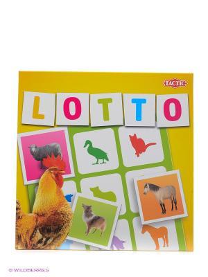 Лото  Домашние животные 2 Tactic Games. Цвет: желтый