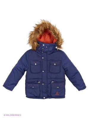 Куртка Babycollection. Цвет: синий, терракотовый