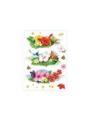 Тропические цветы DECORETTO. Цвет: красный, оранжевый, розовый, желтый, белый, зеленый