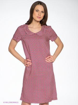 Платье D`imma. Цвет: красный