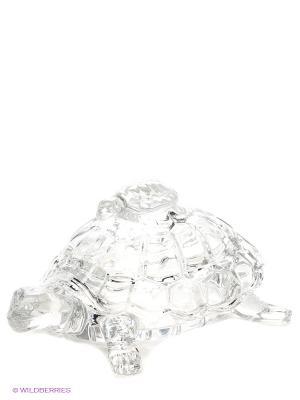 Шкатулка Черепаха Crystal Bohemia. Цвет: прозрачный