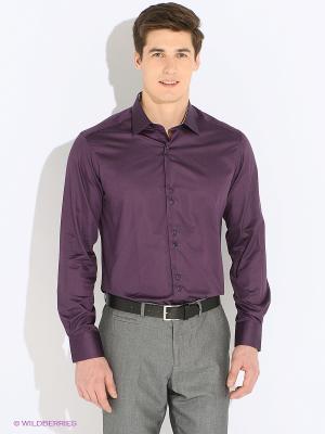 Рубашка TIMOTHY. Цвет: фиолетовый