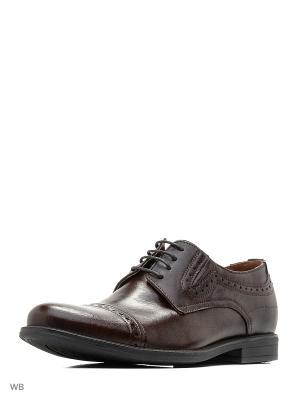 Туфли Companion. Цвет: коричневый