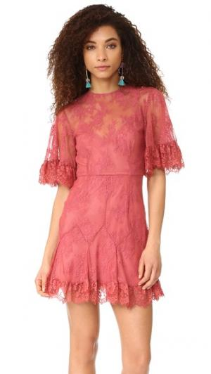 Мини-платье Blind Love Talulah. Цвет: розовое дерево