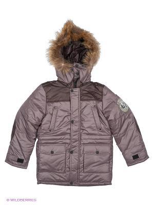 Куртка Батик. Цвет: сливовый