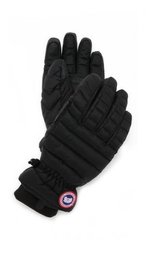 Легкие перчатки Canada Goose