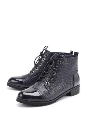 Ботинки Lazzaro. Цвет: синий