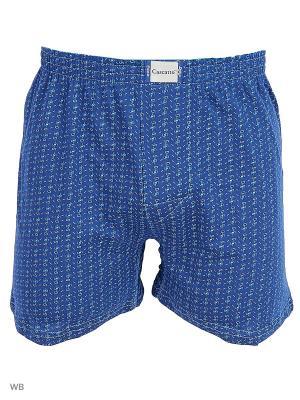 Трусы Cascatto. Цвет: синий, голубой, белый