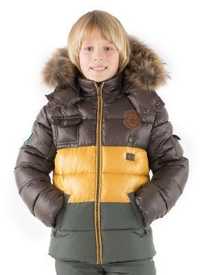 Куртка Pulka. Цвет: коричневый