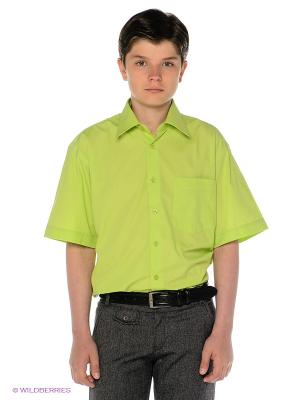 Рубашка Davani. Цвет: салатовый