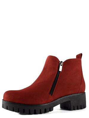 Ботинки BERG. Цвет: терракотовый