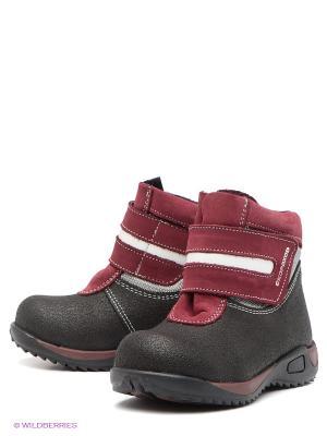 Ботинки Детский скороход. Цвет: черный, бордовый
