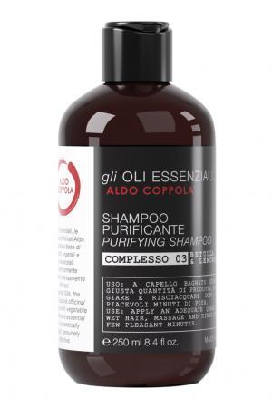 Очищающий шампунь Purifying Shampoo, 250ml Aldo Coppola. Цвет: multicolor